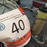 仲間と一緒に楽しくRUN♪ハプニングに負けずクリア!|沖縄本島1周マラソンT.O.F.R(1日目)