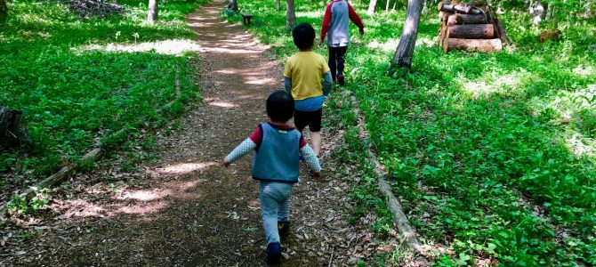 走って見つけた「草深の森」は、家族で楽しめる森林浴スポットだった